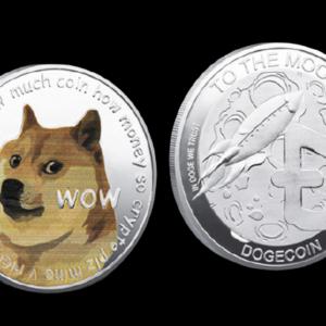 "Sammelmünze ""Dogecoin (DOGE)"" silber"